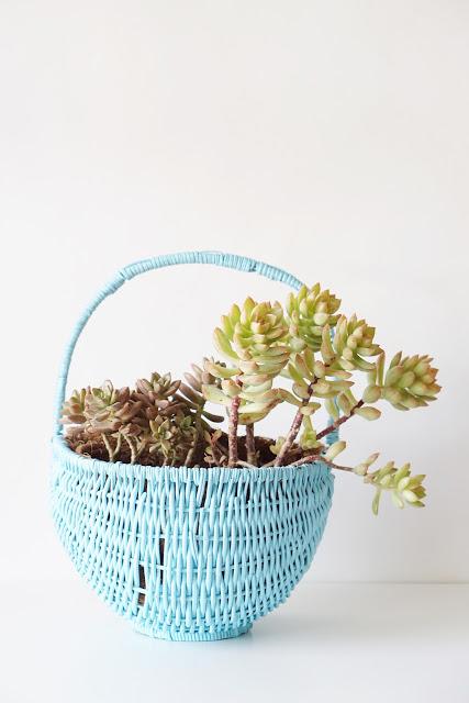 diy-succulent-planter